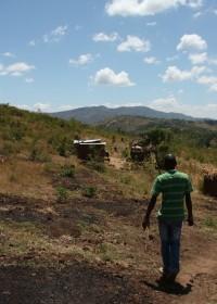 Omgeving Mithini Ithanga, Kenia