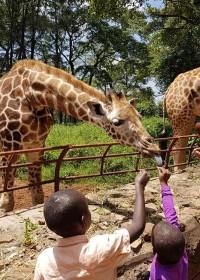Giraffen voeren bij de Giraf Manor, blije kids, voor alles is een eerste keer, Circle4life Kenya