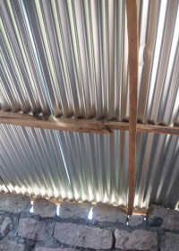 Het golfplaten dak ligt stevig op de houten constructie, huizenbouw Kenia, Kamunyu