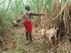 Felistar met 1 van de 8 geiten, home sweet home, na 8 maanden zijn ze terug waar ze horen, Circle4life Kenya